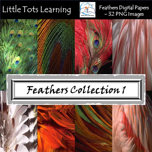 Feathers Digital Papers/Background - Peacock - Tribal Feathers - Set 1