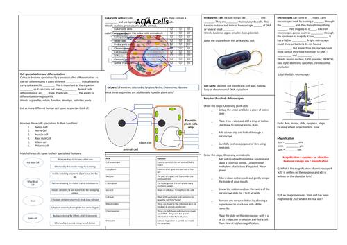 AQA Biology Revision Broadsheets