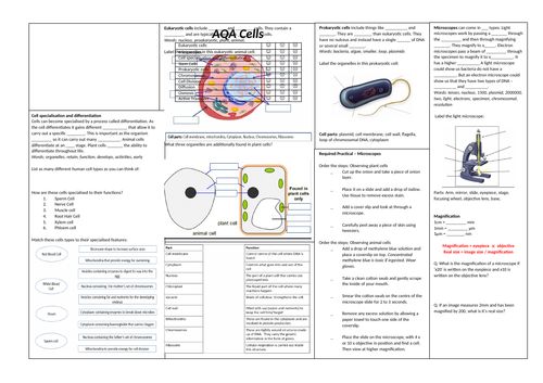 1. Cell Biology Revision Broadsheet (AQA Combined Science Trilogy GCSE)