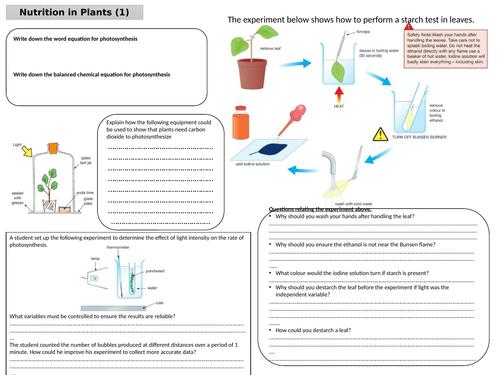 Edexcel IGCSE Biology 9-1 Revision Mat - Nutrition in Plants, including practicals
