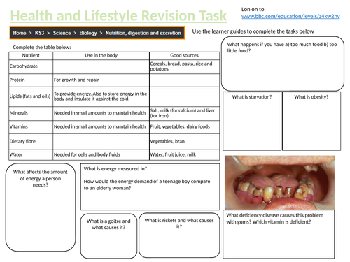 HEALTH AND LIFESTYLE REVISION TASK