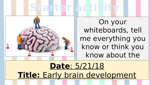 NEW SPEC AQA GCSE PSYCH - Development - Early brain development