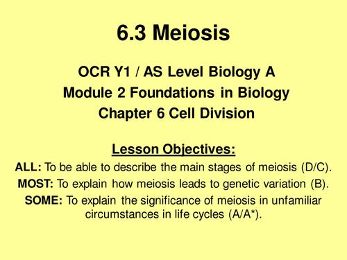 OCR Biology AS 2.6.3 Meiosis (New 2015 OCR Spec)