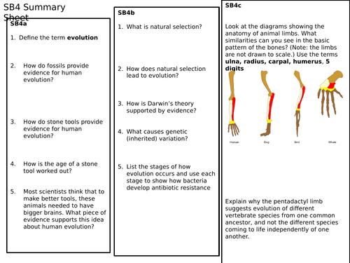 SB4 Summary Revision Sheet