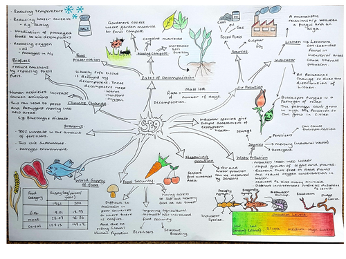 SB9, Revision Concept map, Ecosystems, Edexcel 9 - 1 Biology