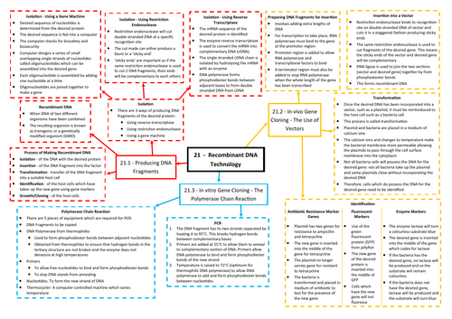 Recombinant DNA Technology Revision Mind Map - AQA AS/A Level Biology (7401/7402)