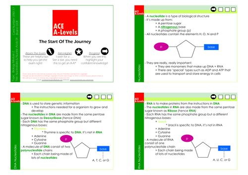 A Level Biology I Section 3 Nucleotides & Nucleic Acids Revision Cards
