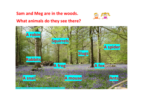 Yr 1 Phonics - Woodland Animals Reading Challenge