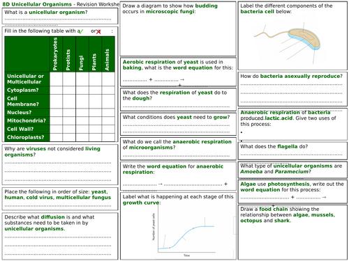 Exploring Science 8D Revision Worksheet- Unicellular Organisms