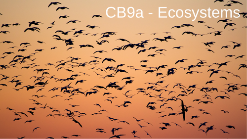 CB9a - Ecosystems