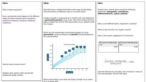 SB2 Revision Summary Sheet