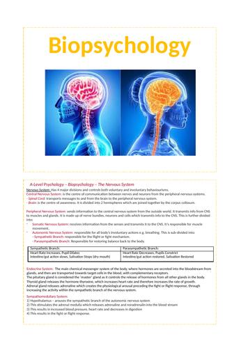 Biopsychology - AQA Psychology A-level