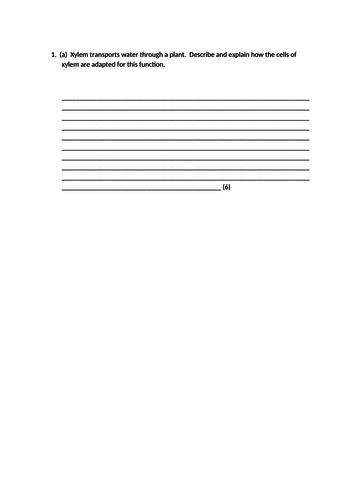 Translocation lesson. A Level Biology, AQA, 7401/7402
