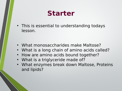 Digestion of carbs, proteins and lipids lesson. A Level Biology, AQA, 7401/7402