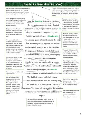 Persausave essays