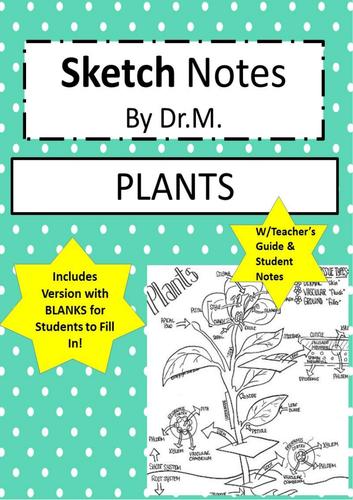 Plants Sketch Notes- 2 versions!