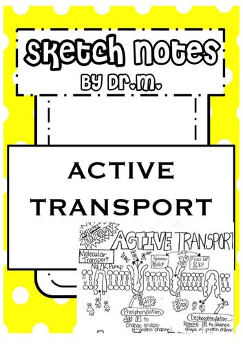 Active Transport Sketch Notes