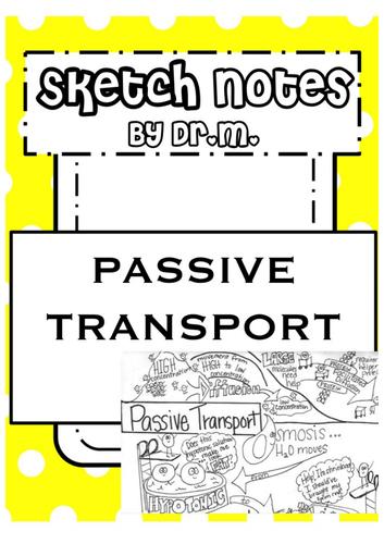 Passive Transport Sketch Notes