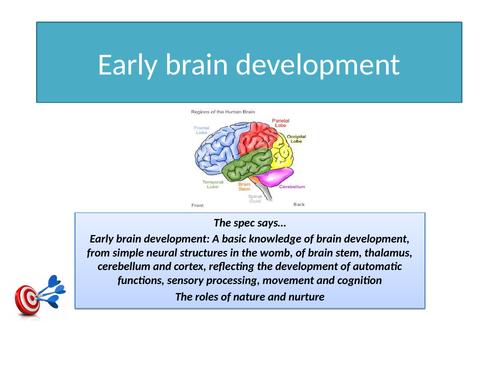 GCSE Psychology AQA New Spec 2017 Paper 1 Cognition & Behaviour - DEVELOPMENT - Full Topic Resources