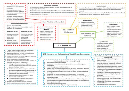 Homeostasis Revision Mind Map - AQA AS/A Level Biology (7401/7402)