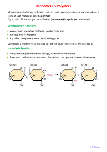 Monomers and Polymers