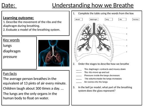Breathing Worksheets