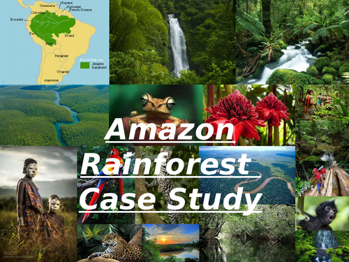 Case Study: Amazon Rainforest - Life Systems OCR Geography A-level