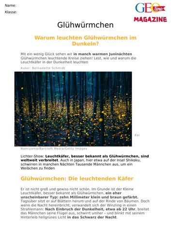 Glühwürmchen - KS3 MAT reading on fireflies