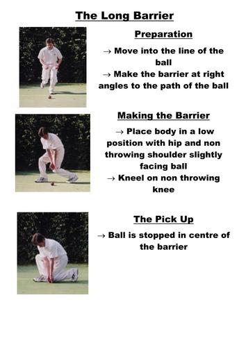 Cricket Long Barrier Teaching Card