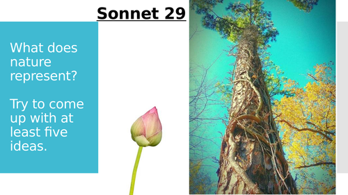 Sonnet 29 (Love and Relationships)