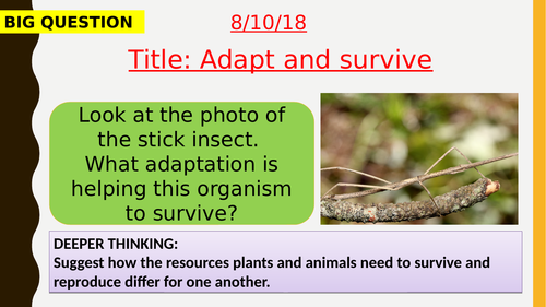 AQA new specification-Adapt and survive-B16.6