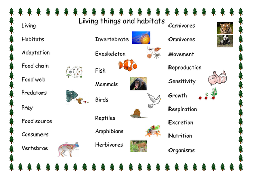 Living things and habitats vocabulary word mat