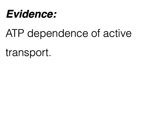 ATP dependence of active transport and respiratory inhibitors