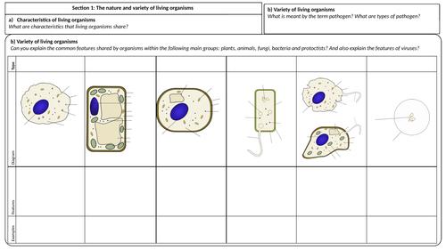 Edexcel iGCSE Biology Triple & Double Award Revision Mindmaps