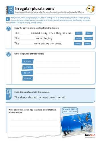 Using irregular plural nouns worksheet - Year 3 Spag
