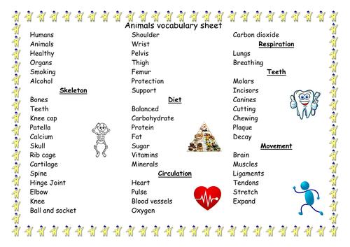 Vocabulary sheets Year 5 science topics