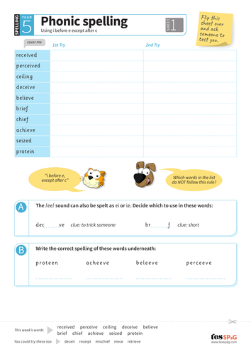Using i before e except after c - Spelling Worksheet - Year 5 Spag