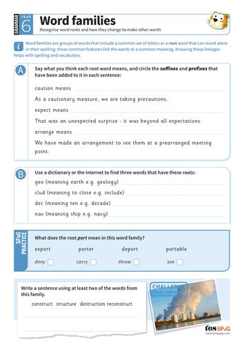 Word families worksheet - Year 6 Spag
