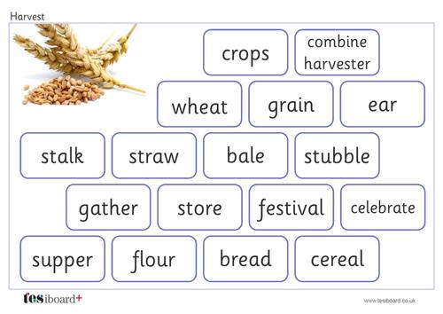 Harvest Vocabulary Mat - Creative Writing - Harvest KS1