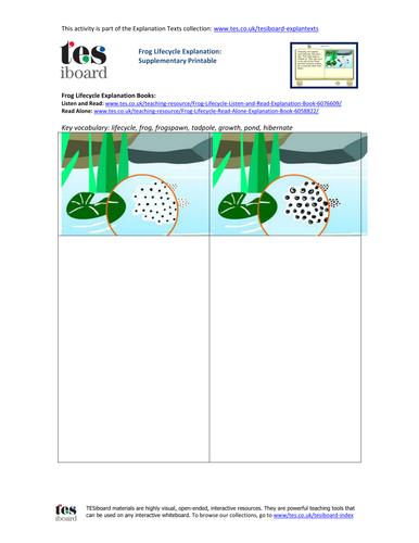 Frog Lifecycle Storyboard Worksheet - KS2 Literacy