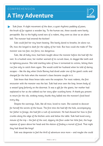 A Tiny Adventure - Text and Questions Exercise - Year 4 Reading Comprehension (Fiction)