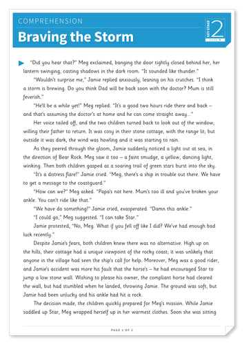 Braving the Storm - Text and Questions Exercise - Year 5 Reading Comprehension (Fiction)