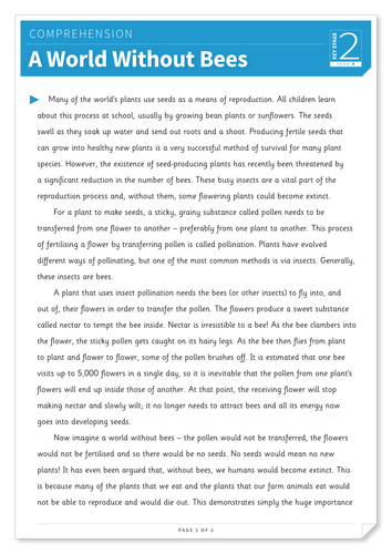 A World Without Bees - Text and Questions Exercise - Year 4 Reading Comprehension (Non-fiction)