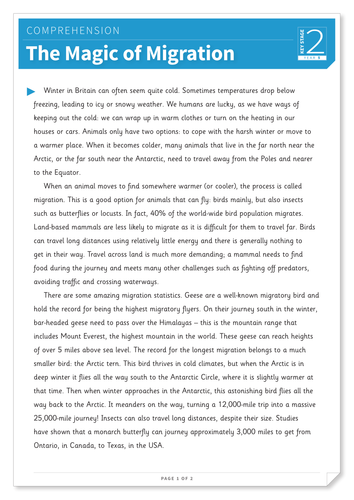 The Magic of Migration - Text and Questions Exercise - Year 5 Reading Comprehension (Non-fiction)