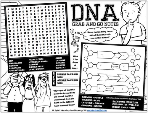 DNA Activities and Games