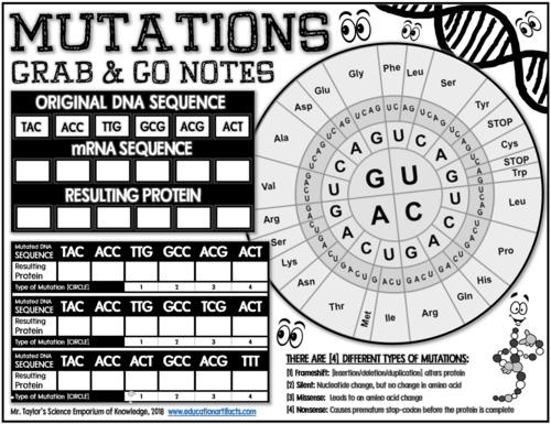 Genetic Mutations: Grab and Go Notes