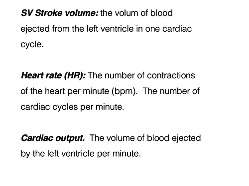 8 slides cardiac output; stroke volume; heart rate.