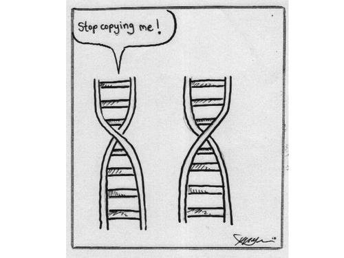 AQA A LEVEL BIOLOGY - RECOMBINANT DNA TECHNOLOGY FULL SCHEME OF WORK