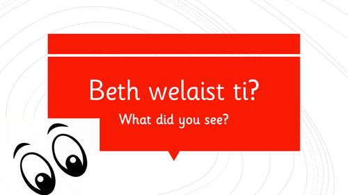 Beth welaist ti? - What did you see?