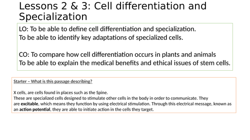 Differentiation and specialized cells